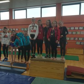Gymnastics Competition March 2018